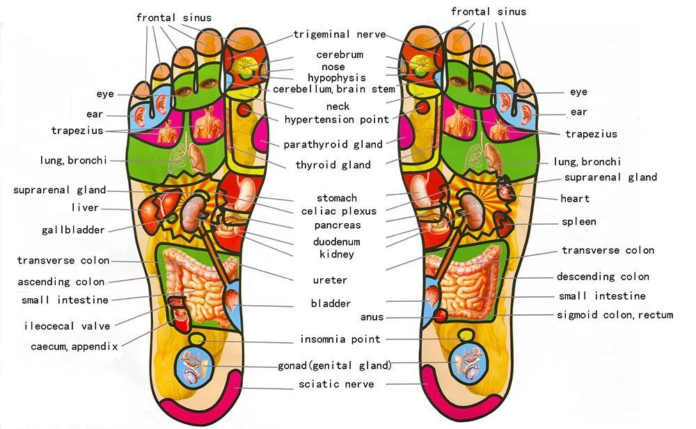 foot reflexology crystal palace massage london